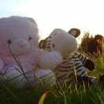Soft Bear and a new friend at Glasto!