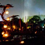 Lanterns in the green fields