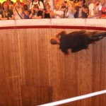 Brave man! Wall of Death