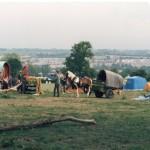 Greenfields 1986