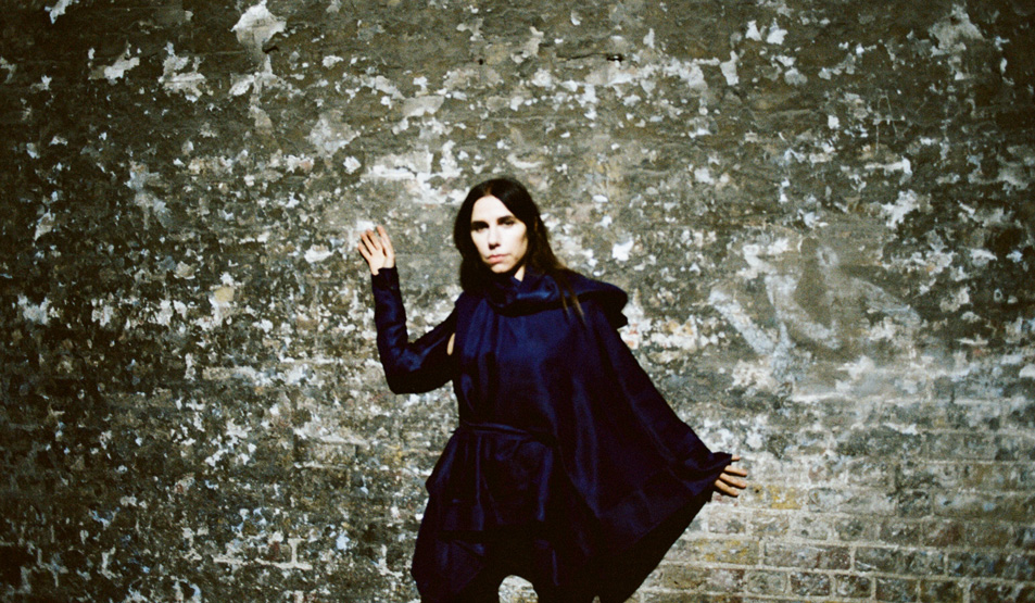 Image result for pj harvey 2016