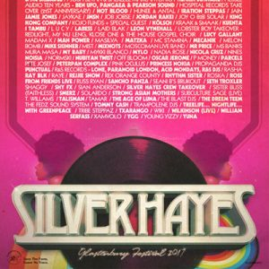 The 2017 Silver Hayes line-up is here!