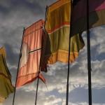 Photogenic flags