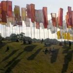 flags against the sun