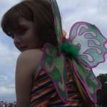 Scarlet fairy