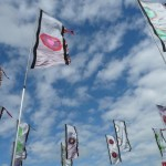 Inspiring flags merrily flapping!