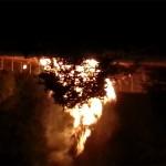 The Burning Bush - Stone Circle