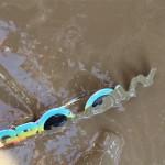 Groovy Mud