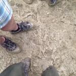 Mud g