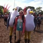 Seagulls!
