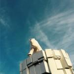 Polar Bear on Fridge Freezer Iceberg