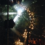 A mirror ball in the forest