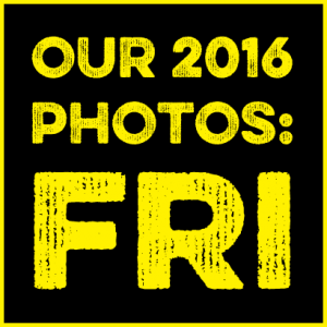 Friday in pictures