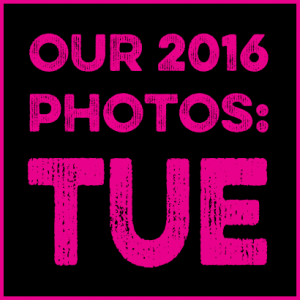 Tuesday in pictures