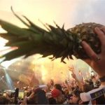 Howard the Pineapple at Coldplay