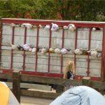 Banksy's animal truck
