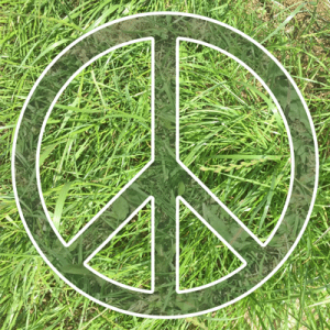 Help create the biggest human Peace sign at Glastonbury